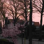 Roze lucht Witte Hoes
