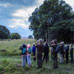 Wandelen met de boswachter